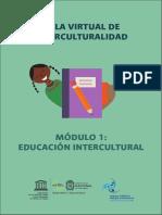 Aula Virtual de Interculturalidad