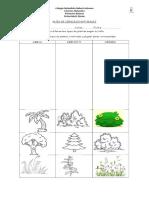 Guía de clasificación de arbusto, hierba y tronco