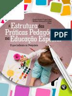 A Estrutura Das Práticas Pedagógicas Na Educação Especial