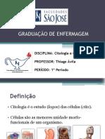 Citologia e enfermagem