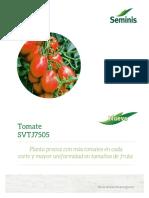Tomate Saladette SVTJ7505
