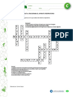 crucigarma respp.pdf