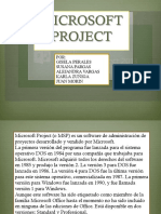Microsoft Project ·