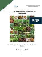 Guia de Plantas Nativas Dapca 2019