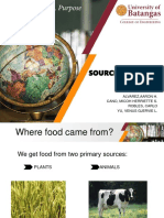SOURCES-OF-FOOD (1).ppt