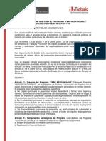 DS_015-2011-TR.pdf