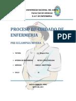 230176422 Terminado Correccion Pae de Preeclampsia