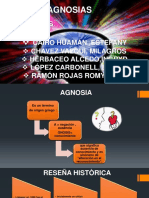Diapositivas de Agnosias y Video