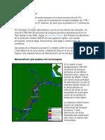resumen deforestacion gestion