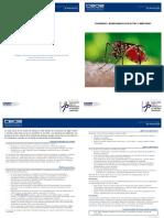 Picaduras y Mordeduras de Insectos y AráCnidos