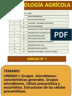 1 Grupos Microbianos Célula Biología Bacterias
