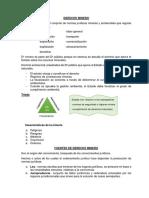 Derecho Minero Resumen