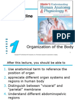 Organization of the Body