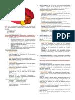 Dopamina Grupo (1)