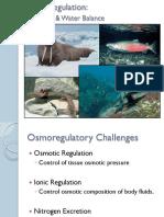 7 Osmoregulation