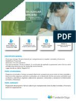 Auxiliar Contable y Financiero Inesco