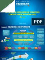 0 ESTRATEGIA FORTALECIMIENTO PRIMARIA 2019 FINAL.pptx