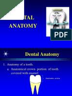 Dental Anatomy.pps