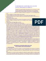 Modelo de Informe de Auditoría de Caso en Presunta Negligencia Médica