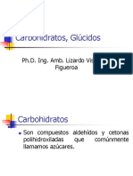 13. Carbohidratos, Glucidos.ppt