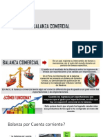 Balanza Comercial Exposic