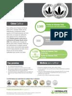 Calificacion Equipo de Mundo Activo 2019 - 2020