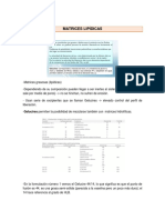 380603887-MATRICES-LIPI-DICAS.docx