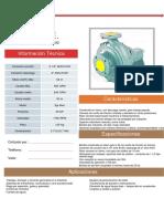 Ficha Tecnica IHM 5x31 Eje libre.pdf