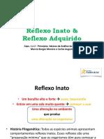 Reflexo Inato e Adq_2