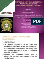 Aparato Digestivo en Aves Domesticas1 160829051139