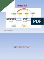 Glucolisis.pps