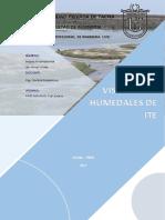 Informe de Humedales de Ite
