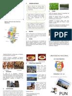 kupdf.net_triptico-puno.pdf