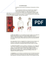 La Mochila Wayuu
