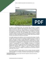 2.7 Economía-producción chinchaypujio.doc
