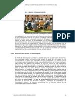2.8 y 2.9 Comunicaciones -Organizacion Institucional