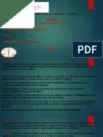 Medicina Legal Trabajo Hemen