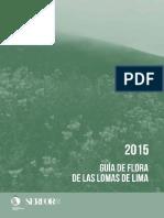 guia_flora_lomas_lima_2015.pdf