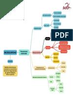 Mapa Conceptual BioSeguridad