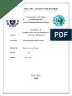Informe de Sistematica n5