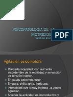 Psicopatologia de La Motricidad