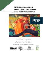 Impactos del Tren Maya