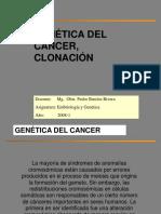 Genetica Del Cancer Clonacion