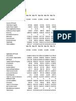 Balance Sheet & Ratio Analysis