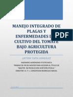 Manejo integrado de plagas  enfermedades en cultivo de tomate