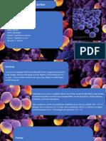 Staphylococcus aureus dan Streptococcus