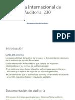 Norma Internacional de Auditoria  230.pptx