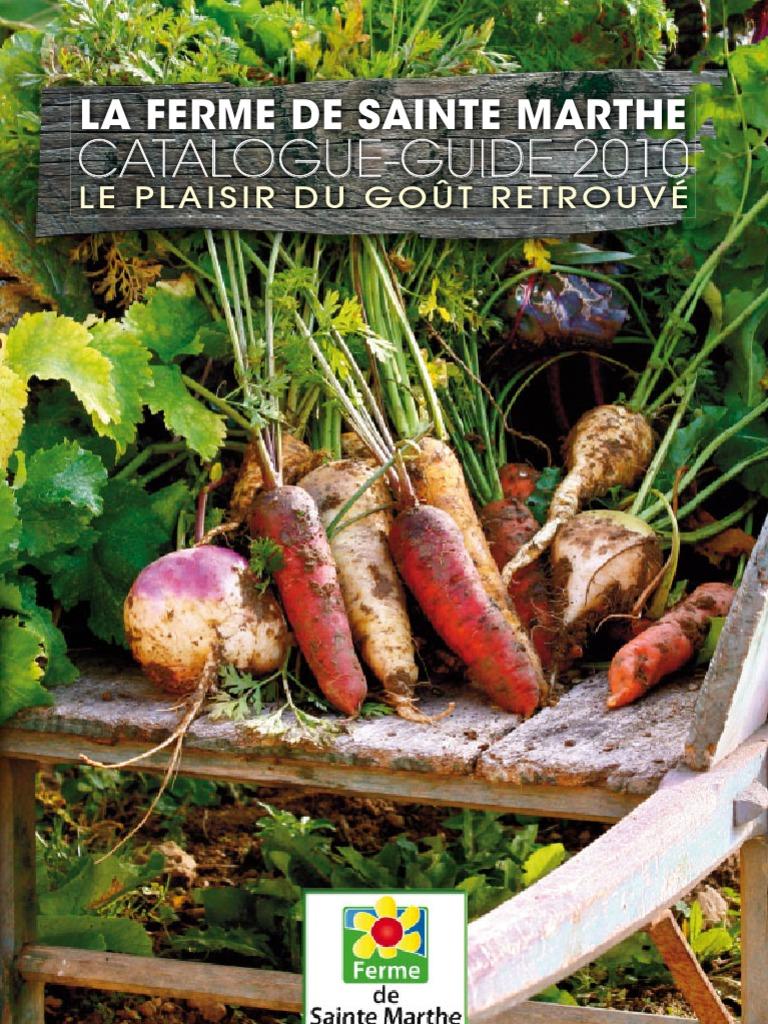 Apollo Julienne Épluche parfait pour légumes et Cuisson Ingrédients