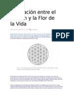 La Relación Entre El Tzolkin y La Flor de La VIDA