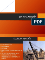 Clase N_4 EIA Para Minería.pptx
